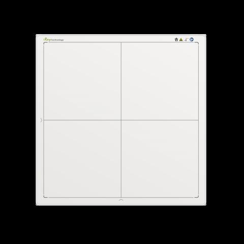 RAPIXX 4343M1:2i WiFi